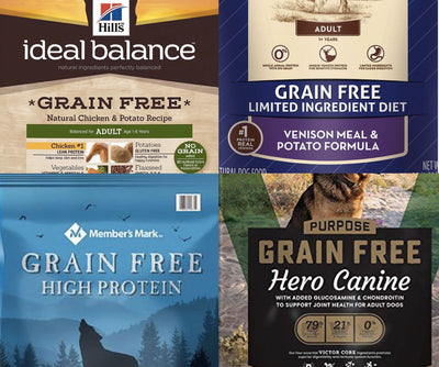 Is Grain-free Kibble Healthier for Dogs or Dangerous?