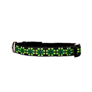Rainforest Dog Collar