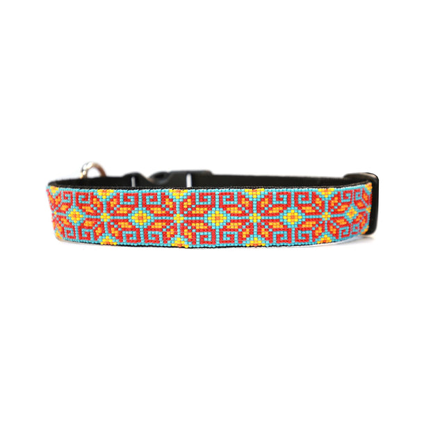 Selva Dog Collar
