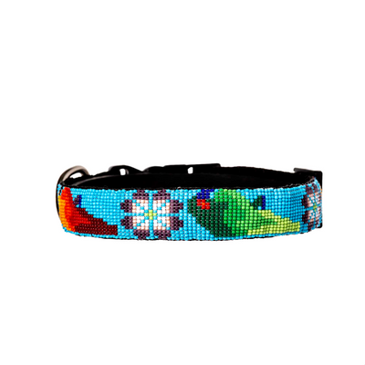 Jungle Joy Dog Collar