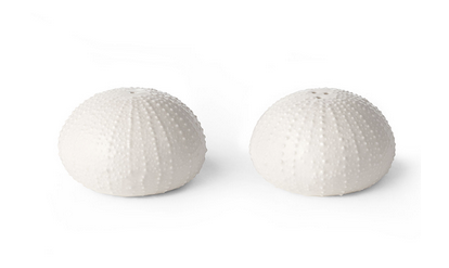 Ceramic Sea Urchin Salt and Pepper Shakers