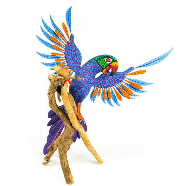 Majestic Parakeet on Branch - Oaxacan Alebrije Wood Carving