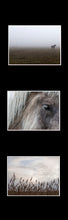 Afbeelding in Gallery-weergave laden, Ikea Billy Oxberg Passepartout Custom made photography Marieke Feenstra hack wadden paarden horses fotografie art 3 images