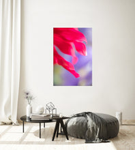 "Afbeelding in Gallery-weergave laden, PRW-014 ""Purple Red"" BLOOM collectie fotografie"