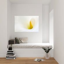 "Afbeelding in Gallery-weergave laden, PRW-021 ""Flow"" BLOOM collectie fotografie"