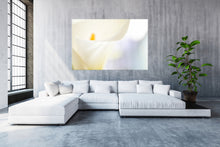 "Afbeelding in Gallery-weergave laden, PRW-022 ""Flow IV"" BLOOM collectie fotografie"