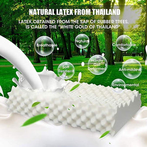 Thailand Natural Massage Latex Pillow