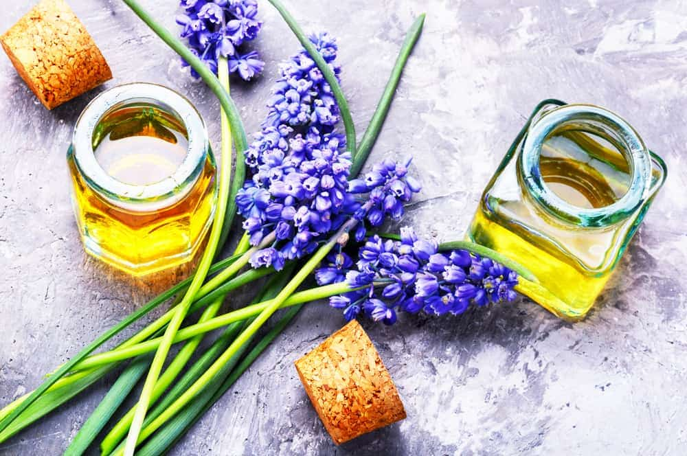 hyacinth essential oil