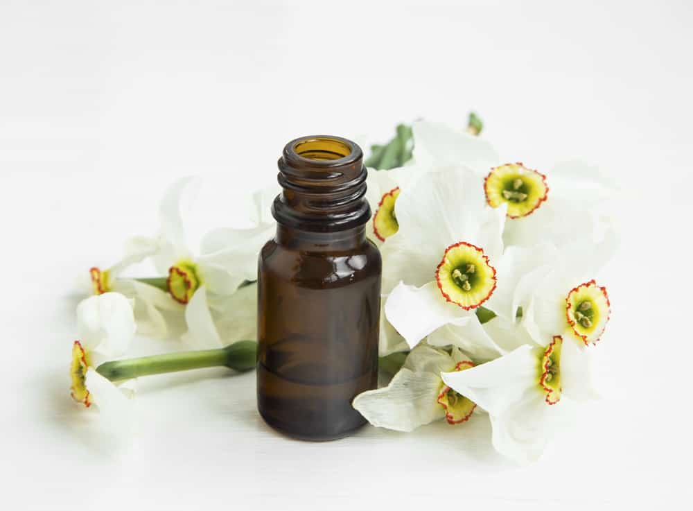 narcissus essential oil