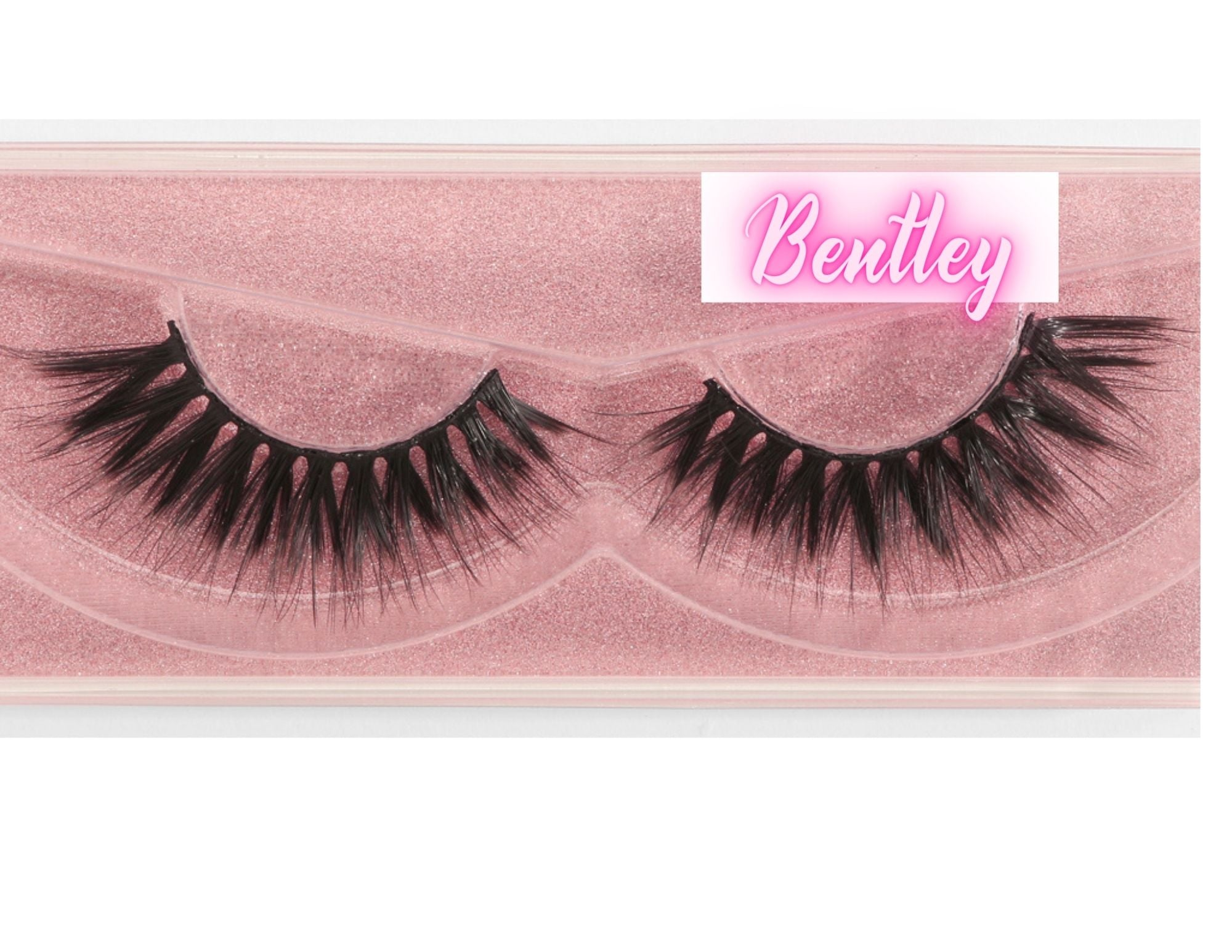 Bentley Lash