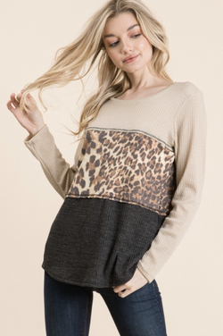 Natural Beauty Color Block Top