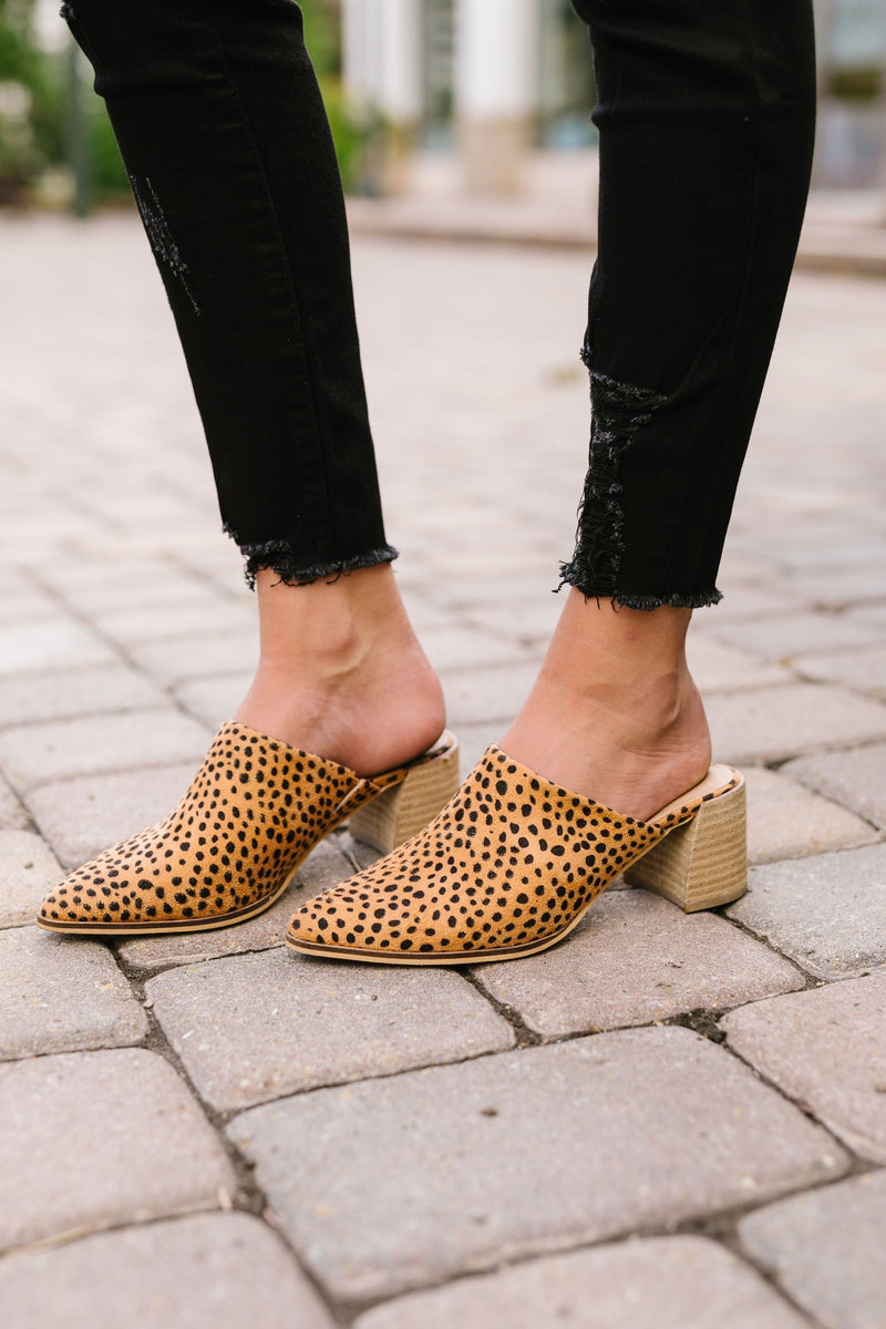 Spotted Cheetah Mules