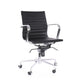 Decade Modern Classic Aluminum Office Chair (Set of 2)