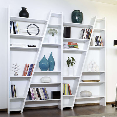Tema Home-Delta Composition New 2010-004    093999-DELTA4-Bookcase-MODTEMPO