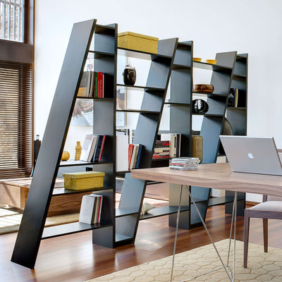 Tema Home-Delta Composition New 2010-005    093999-DELTA5-Bookcase-MODTEMPO