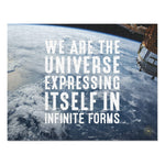 We Are The Universe - 252 Piece Puzzle - Reality Hacker Co.