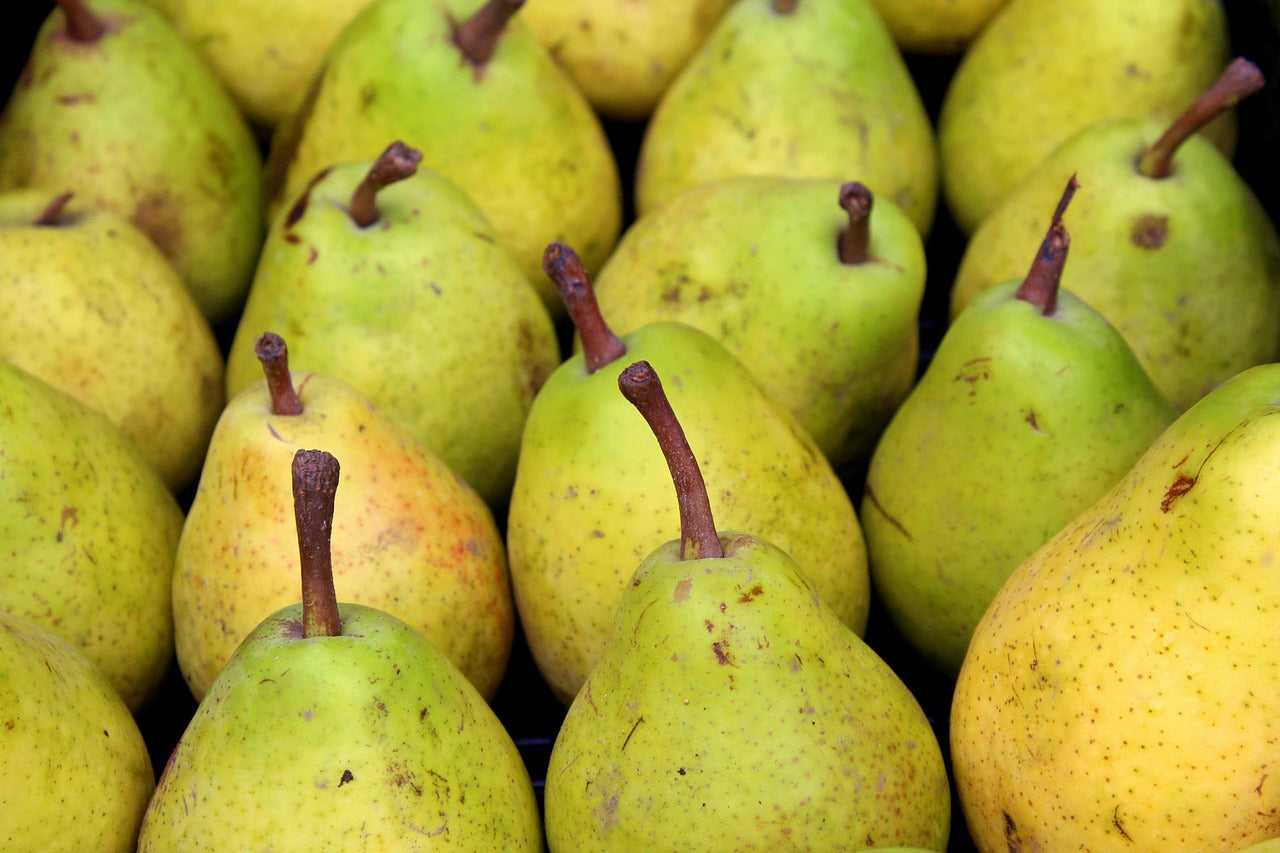 Different Types of Pears