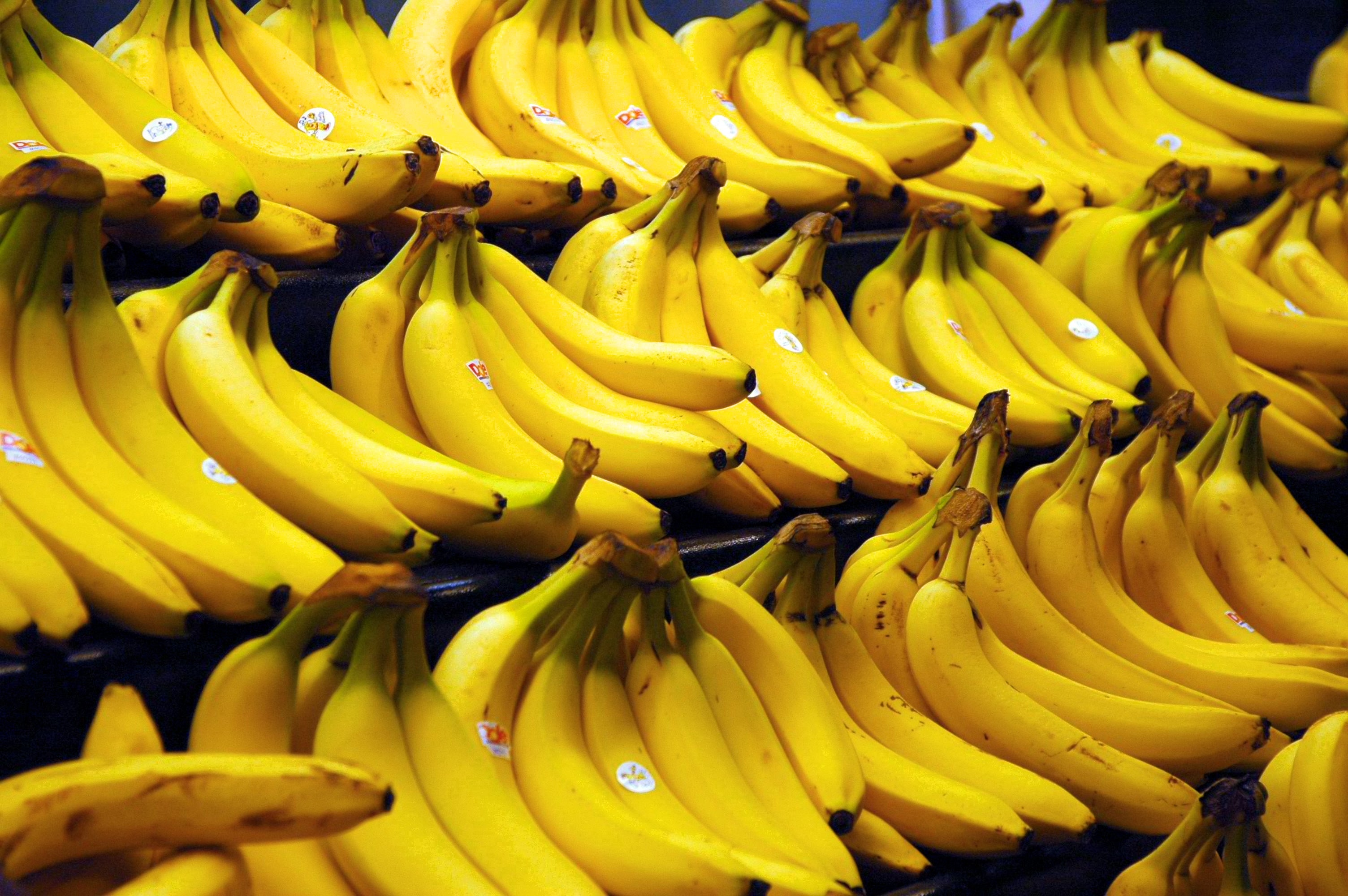 Banana Interrupted: The History of The World's Most Popular Fruit
