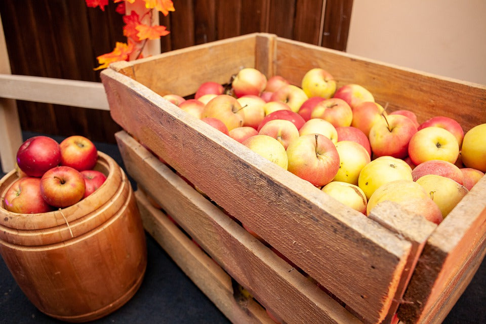 All About Fruit Boxes