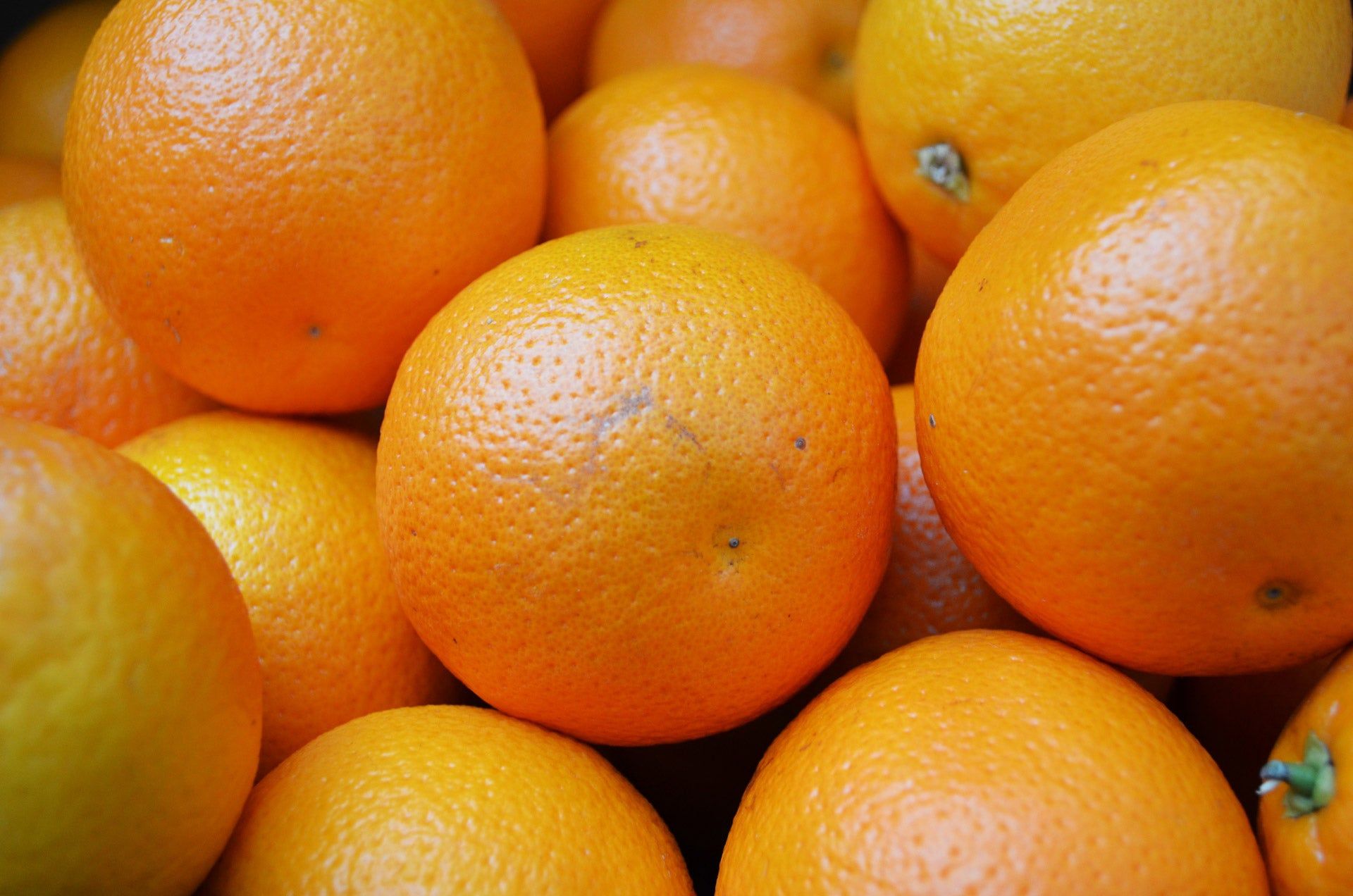 A Brief History of Oranges