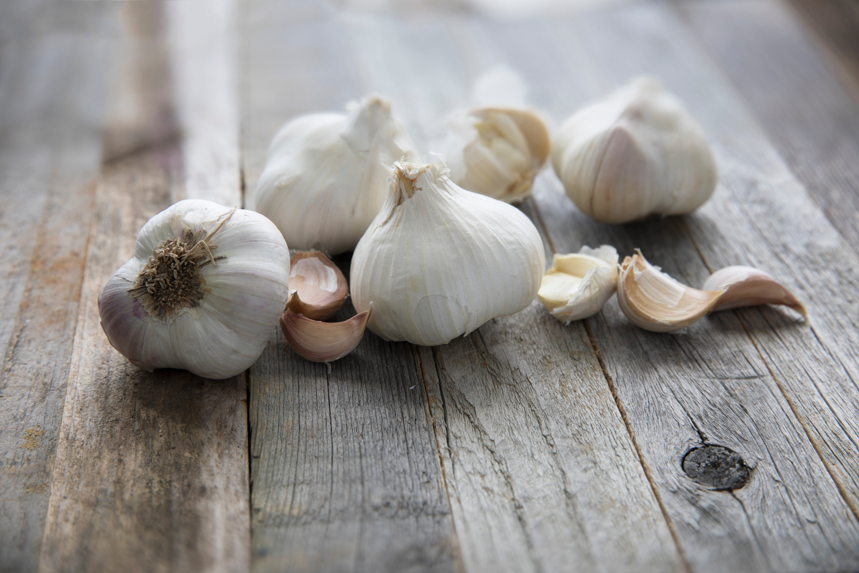 Different Types of Garlic