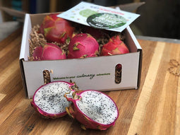 Organic Dragon Fruit Experience