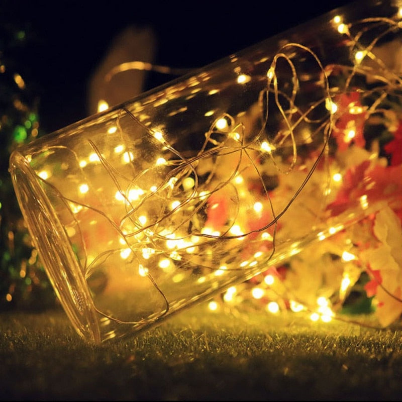The Solar Energy Holiday Bottle Lights