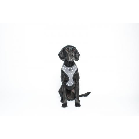 M&B Neoprene Harness Grey Dog Med