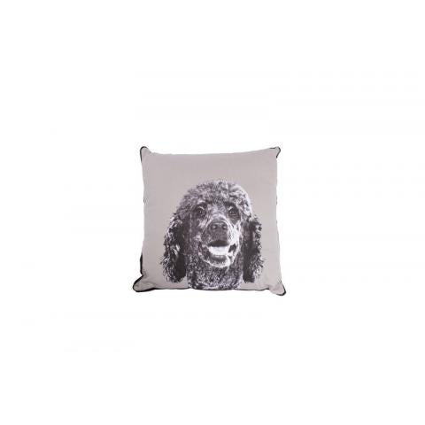M&B Cushion Poodle