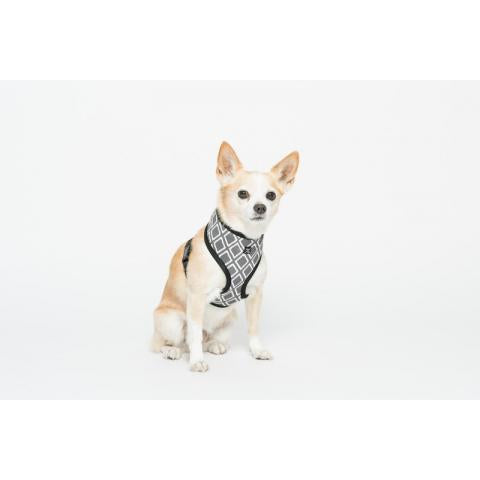 M&B Neoprene Harness Grey Ikat Xxl