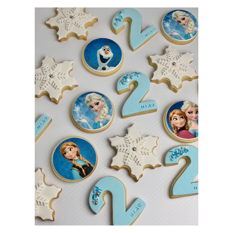 20x Frozen Cookie Set