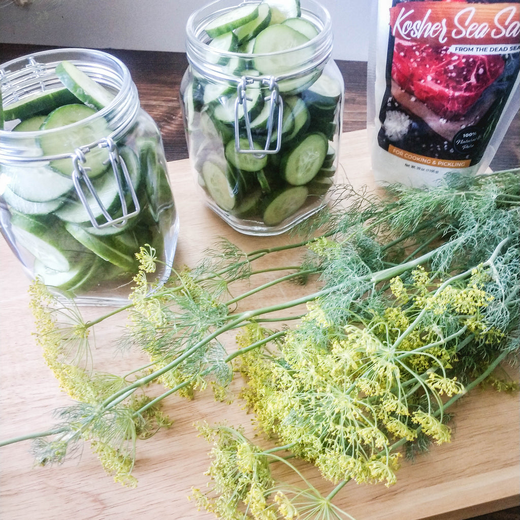 Our Favorite Refrigerator Pickles