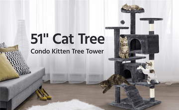 Buying Guide: How to Choose a Suitable Cat Tree for Your Cat?