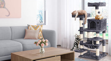 Pawscoo Cat Tree Buying Guide