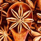 Star Anise- Karanphool-250 Grams Pack