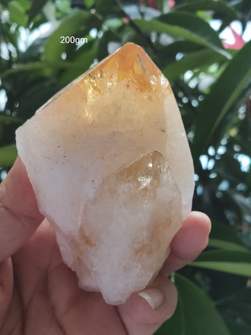 Citrine Point Large 200gm  ; 85x50mm