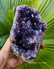 Amethyst Deep Purple cluster from Uruguay 530gm