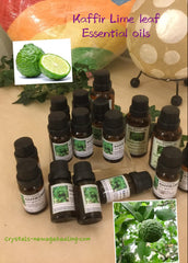 Kaffir Lime Leaf- Pure Essential Oils, 10ml