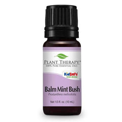 Plant Therapy Balm Mint Bush Essential Oil 10ml