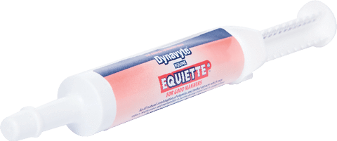 Dynavyte Equine Equiette Paste - Gympie Saddleworld & Country Clothing
