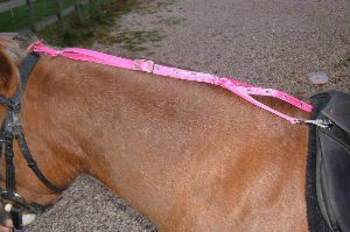 Gympie Saddleworld & Country Clothing English Bridles & Reins Daisy Reins