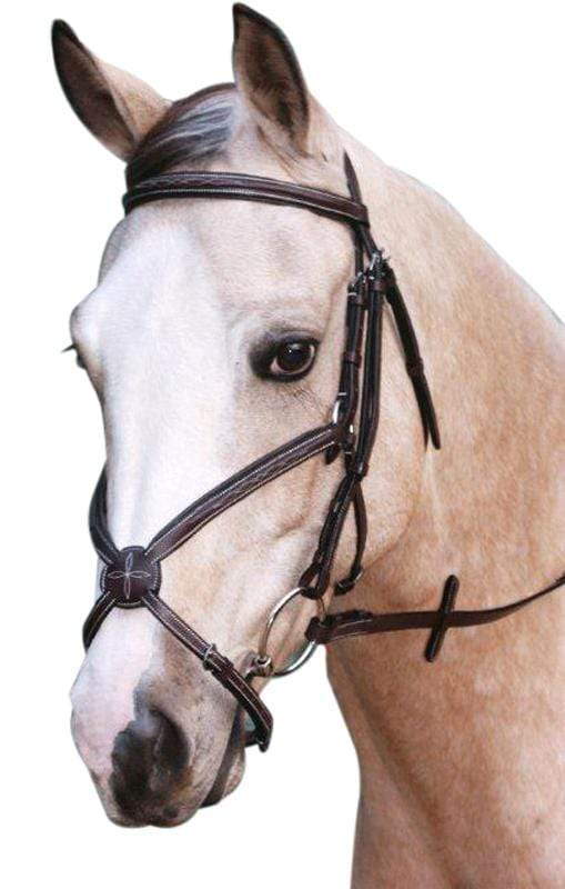 National Equestrian Grackle Bridle - Gympie Saddleworld & Country Clothing