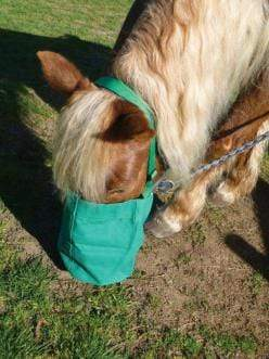 Gympie Saddleworld & Country Clothing Feeders & Water Buckets Canvas Nose Bag