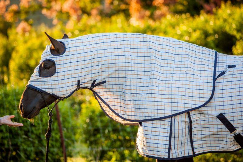Gympie Saddleworld & Country Clothing HOODS Showtime Hood