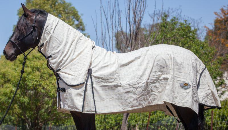 Gympie Saddleworld & Country Clothing summer horse rug GTL Aussie Ripstop Combo
