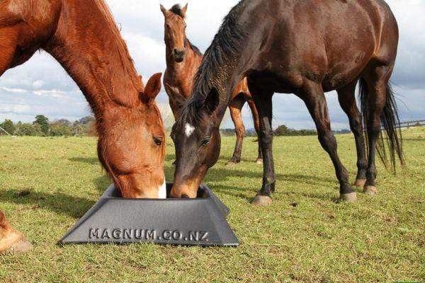 Magnum Paddock Feeder - Gympie Saddleworld & Country Clothing