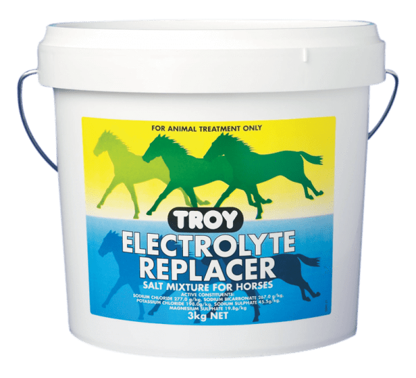 Troy Electrolyte Replacer - Gympie Saddleworld & Country Clothing