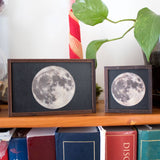 Wooden moon trinket boxes