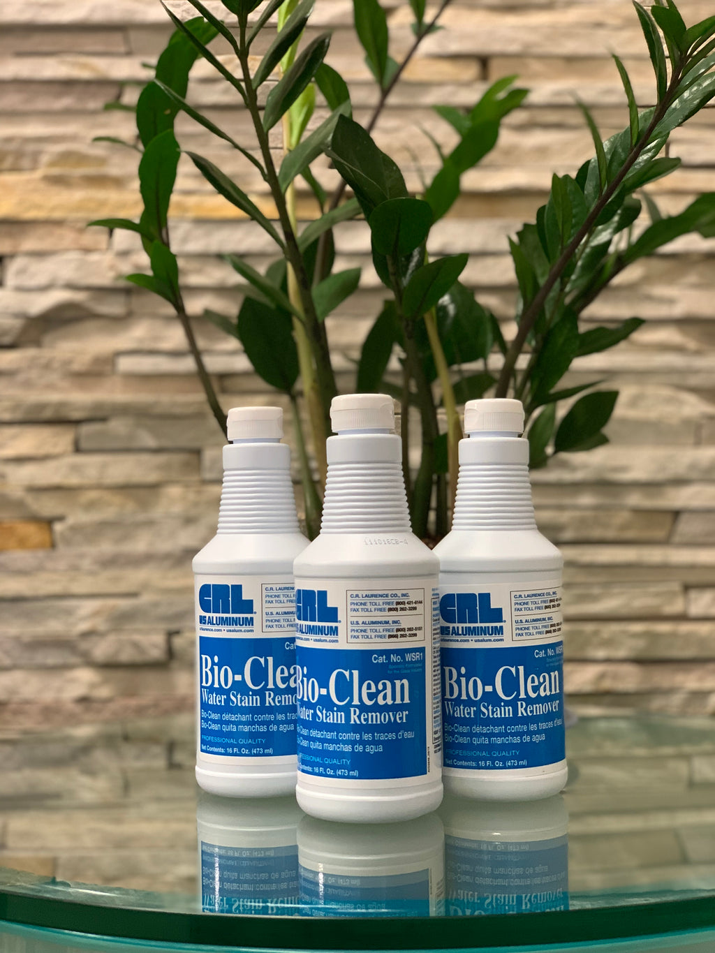 Bio-Clean- Water Stain Remover