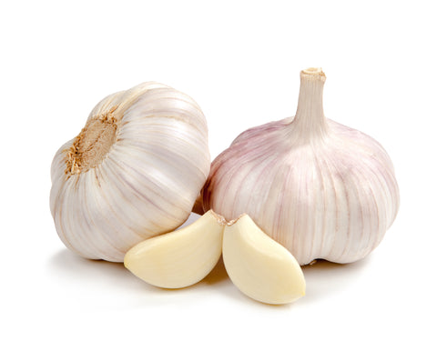 Eden Tree Garlic - 1pk